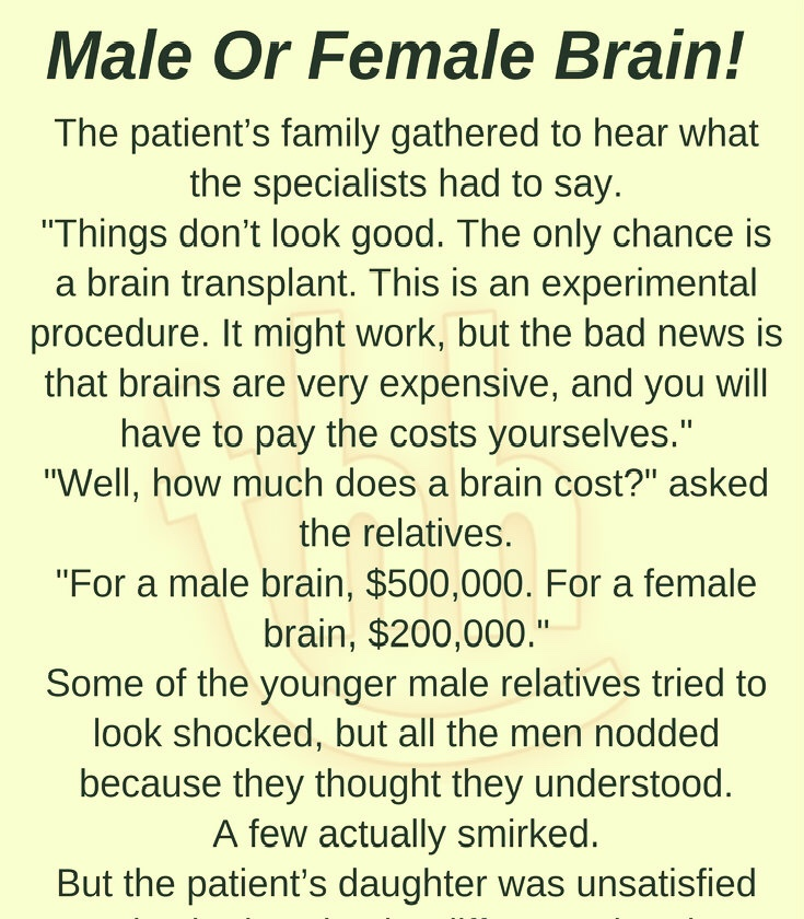 MALE OR FEMALE BRAIN!(FUNNY STORY)