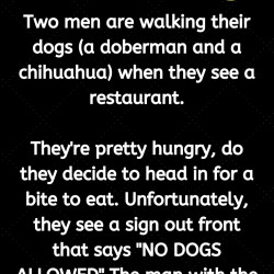 Two men are walking their dogs (a doberman and a chihuahua) when they see a restaurant.