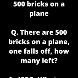 500 bricks on a plane