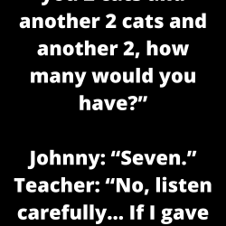 "Teacher: ""If I gave you 2 cats and another 2 cats and another 2, how many would you have?"""