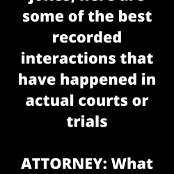 If you like lawyer jokes, here are some of the best recorded interactions that have happened in actual courts or trials