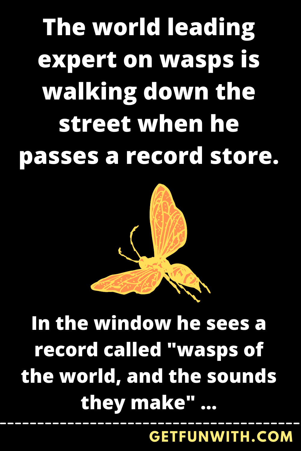 The world leading expert on wasps is walking down the street when he passes a record store.