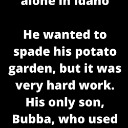 An old man lived alone in Idaho